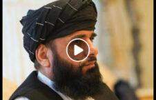 ویدیو سهیل شاهین مذاکرات بین الافغانی 226x145 - ویدیو/ سخنان سهیل شاهین در پیوند به آغاز مذاکرات بین الافغانی