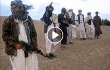 ویدیو مرگ دردناک جوان طالبان 226x145 - ویدیو/ مرگ دردناک یک جوان به دست طالبان