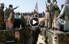 ویدیو گشت طالبان کمپنی کابل 226x145 - ویدیو/ گشت طالبان در منطقه کمپنی کابل