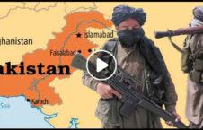 ویدیو گشت گذار طالبان بیرق پشاور 226x145 - ویدیو/ گشت و گذار آزادانه طالبان با بیرق امارات اسلامی در پشاور