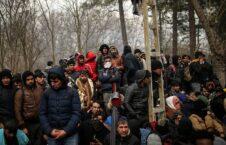 پناهجو یونان 1 226x145 - افزایش نگرانی ها از وضعیت پناهجویان در یونان