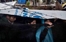 کمپ موریا یونان 11 226x145 - تصاویر/ خطر شیوع کرونا در بزرگترین کمپ پناهجویان یونان