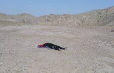 جسد زن پکتیکا 226x145 - تصویر/ کشف جسد یک زن در پکتیکا
