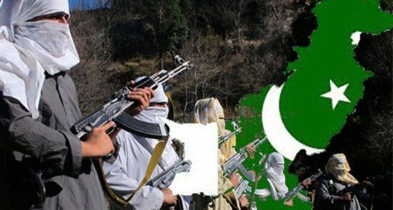 طالبان پاکستان 550x295 - اظهارات معاون سخنگوی ریاست جمهوری درباره ارتباط عمیق پاکستان با طالبان