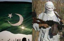 طالبان 226x145 - قوماندانهای طالبان پولهای عشر و جزیه مردم افغانستان را در کجا سرمایه گذاری می کنند؟