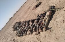 عساکر کشته نیمروز 226x145 - تصویر/ عساکر کشتهشده به دست طالبان در نیمروز