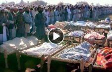 ویدیو جنایات طالبان هفته 226x145 - ویدیو/ آمار جنایات طالبان در دو هفته اخیر