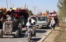 ویدیو جنگ طالبان بیجا شده هلمند 226x145 - ویدیو/ جنگ طالبان و شرایط وخیم بیجا شده گان هلمند