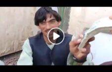 ویدیو طالبان عساکر هلمند پول 226x145 - ویدیو/ طالبان عساکر هلمند را با پول می خرد!