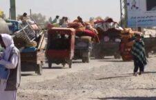 بیجا شده هلمند  226x145 - بیجا شدن صدها هزار باشنده افغان در نتیجه ناامنی و جنگ در سال ۲۰۲۰ عیسوی