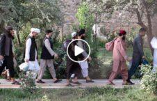 ویدیو شورای امنیت ملی زندانی طالبان 226x145 - ویدیو/ واکنش شورای امنیت ملی به رهایی بیشتر زندانیان طالبان