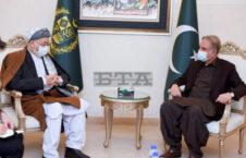 محمد کریم خلیلی شاه محمود قریشی 4 226x145 - تصاویر/ دیدار محمد کریم خلیلی با وزیر امور خارجه پاکستان