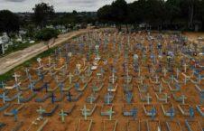 برازیل کرونا 226x145 - تصویر/ قبرستان کرونایی ها در برازیل