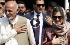 ویدیو افشاگری خروج ملیون دالر بی بی گل 226x145 - ویدیو/ افشاگری در مورد خروج ملیون ها دالر از افغانستان توسط بی بی گل