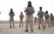 القاعده 226x145 - گزارش یک منبع خارجی در پیوند به فعالیت شبکه القاعده در افغانستان