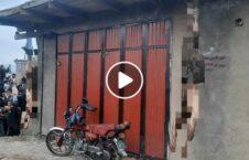 ویدیو دار جسد طالب کاپیسا 226x145 - ویدیو/ به دارآویختن جسد دو طالب در کاپیسا