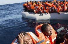 افریقایی 226x145 - سرنوشت نامشخص هزاران طفل پناهجوی لادرک شده افریقایی در قاره اروپا