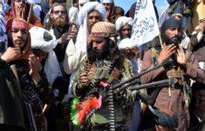 آتشبس عیدانه طالبان 226x145 - واکنش شورای عالی مصالحه ملی به اعلام آتشبس عیدانه از سوی طالبان