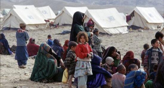 بیجاشده 550x295 - تاکید معین مالی و اداری وزارت امور مهاجرین بر کمکرسانی عاجل به بیجاشده گان در هرات