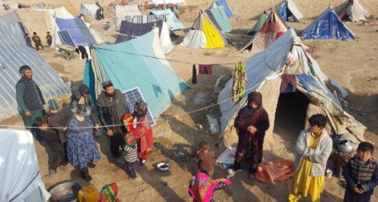 بیجا شده 550x295 - جنگ و ناامنی ۱۷۰۰ خانواده را در هرات آواره کرد