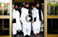ویدیو/ انتقاد والی لوگر از دروغ گویی طالبان