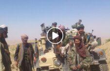 ویدیو غزنی سقوط طالبان 226x145 - ویدیو/ غزنی در یک قدمی سقوط به دست طالبان