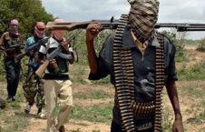 بوکو حرام 226x145 - جانشین رهبر بوکو حرام در نایجیریا تعین شد