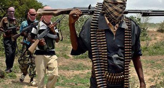 بوکو حرام 550x295 - جانشین رهبر بوکو حرام در نایجیریا تعین شد