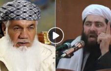 ویدیو مجیب الرحمن انصاری اسماعیل خان 226x145 - ویدیو/ انتقاد شدید مجیب الرحمن انصاری از اسماعیل خان