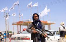 طالبان 226x145 - از جستجوی خانه به خانه تا تهدید به مرگ؛ آیا طالبان به دنبال انتقام جویی است؟