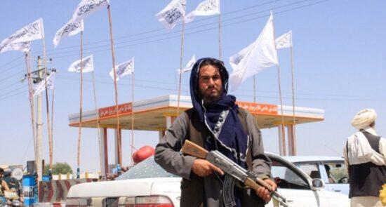 طالبان 550x295 - از جستجوی خانه به خانه تا تهدید به مرگ؛ آیا طالبان به دنبال انتقام جویی است؟