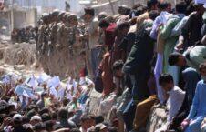 کاریکاتور/ جنایت تکان دهنده خارجی ها در میدان هوایی کابل
