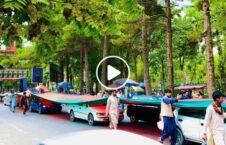 ویدیو بیرق سه رنگ کابل 226x145 - ویدیو/ حمل بیرق سه رنگ کشور توسط باشندهگان کابل