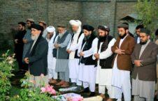 گلبدین حکمتیار طالبان نماز 226x145 - تصویر/ طالبان و ادای نماز به امامت گلبدین حکمتیار