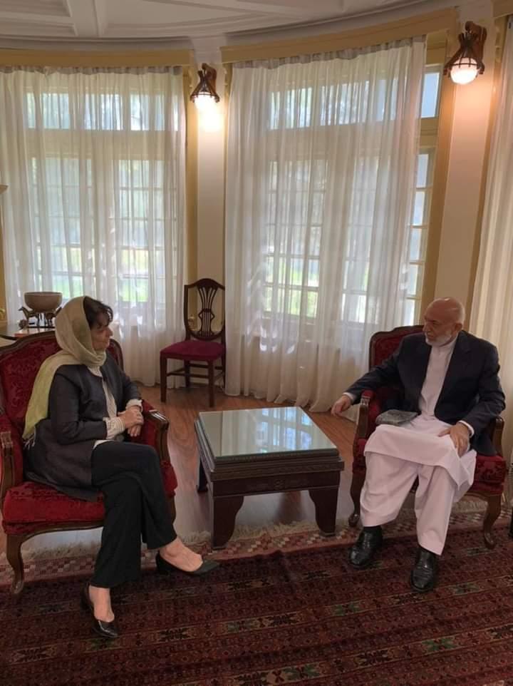 حامد کرزی دیبرا لاینز - دیدار نماینده خاص سرمنشی سازمان ملل متحد با رییسجمهور پیشین افغانستان