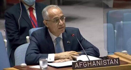 غلاممحمد اسحاقزی 550x295 - چرا اسحاقزی از سخنرانى در سازمان ملل انصراف داد؟
