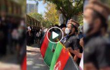 ویدیو افغان قونسولگری پاکستان ایران 226x145 - ویدیو/ تجمع اعتراضی مهاجرین افغان در مقابل قونسولگری پاکستان در ایران