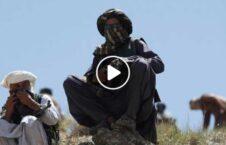 ویدیو جنایات طالبان پنجشیر کاپیسا 226x145 - ویدیو/ جنایات طالبان با غیر نظامیان پنجشیری در زندان کاپیسا