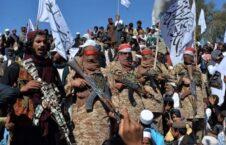 طالبان 226x145 - تصاویر/ نسل کشی اندرابی ها توسط طالبان (18+)