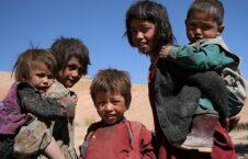 هزاره 226x145 - مرگ دردناک هشت طفل هزاره در اثر گرسنگی؛ حادثه ای كه بايد دنيا را تكان میداد!