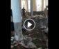 ویدیو/ خسارات برجای مانده از انفجار خونین در مسجدی در کندز