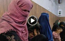 ویدیو تفنگ طالبان خانه مردم کابل 226x145 - ویدیو/ ورود تفنگداران طالبان به خانه های مردم در کابل