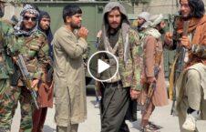 ویدیو حمله طالب خبرنگار خارجی کابل 226x145 - ویدیو/ لحظه حمله طالب مسلح بر یک خبرنگار خارجی در کابل