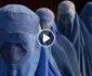ویدیو/ پیام دختر شجاع هراتی برای طالبان