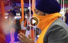 ویدیو غارت معبد سیک طالبان 226x145 - ویدیو/ غارت معبد سیکها توسط طالبان