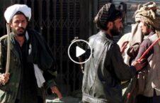 ویدیو فرار امر معروف نهی منکر طالبان 226x145 - ویدیو/ لحظه فرار یک جوان از دست مامور امر به معروف و نهی از منکر طالبان