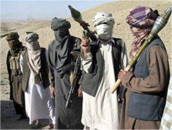25 عضو طالبان افغانستان كشته شدند