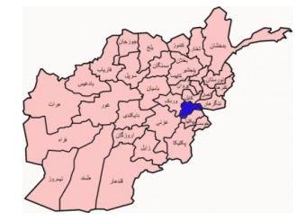 logar - دستگیر شدن یک عضو ارشد گروه طالبان در ولایت لوگر